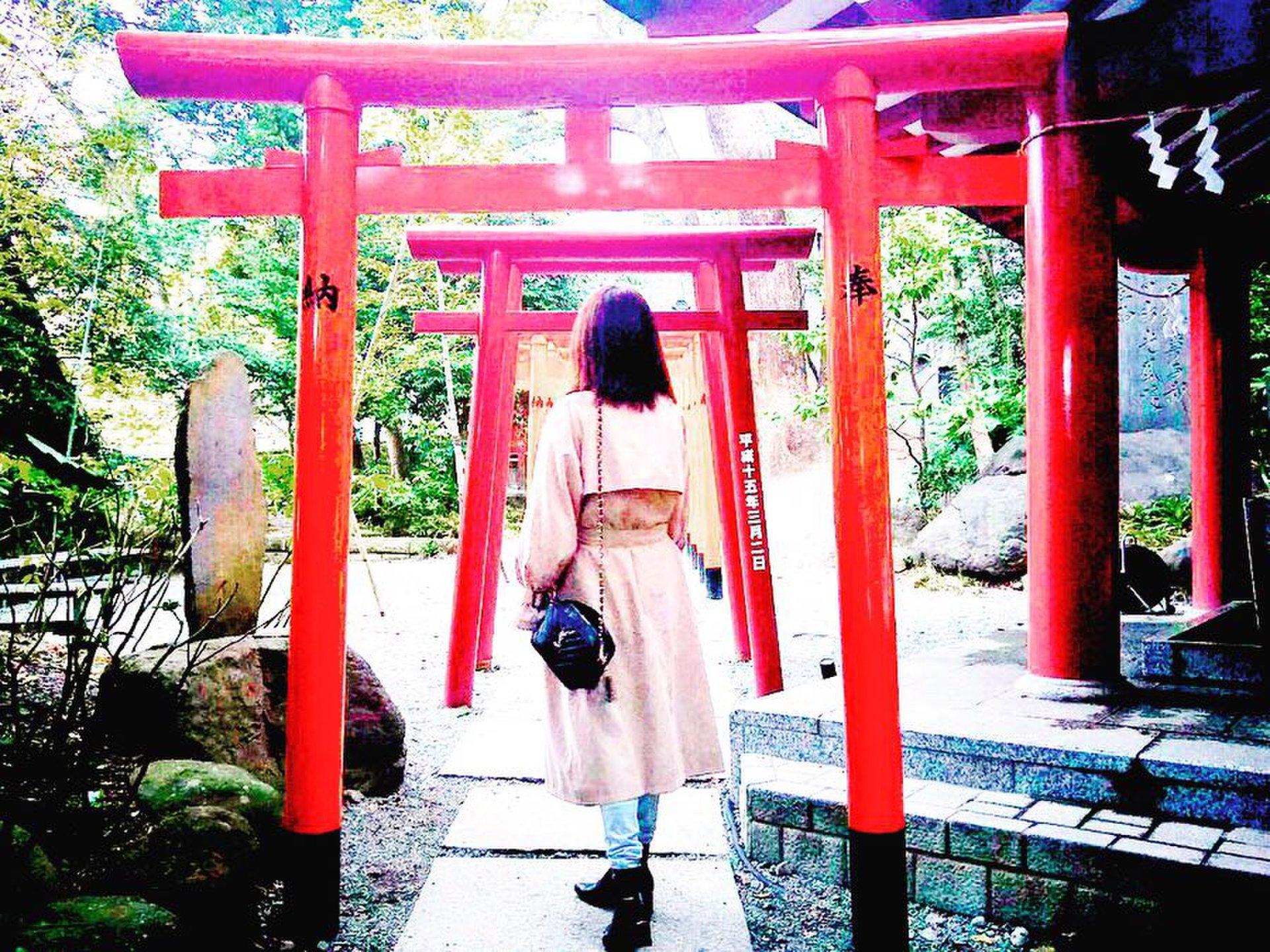 「ここに行ったら運が上がったの」不思議なパワーがある?!来宮神社でインスタ映え♡