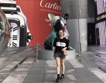 シンガポール旅行♡シャングリラすぐそば・オーチャード家族向けホテル