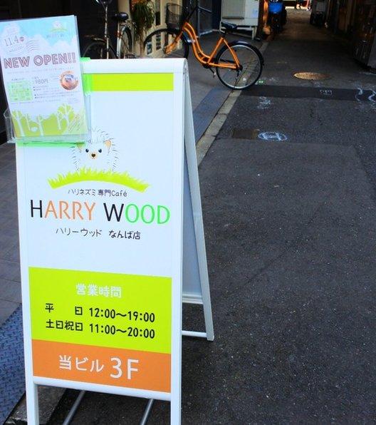 ハリネズミ専門カフェ HARRY WOOD(ハリーウッド)なんば店