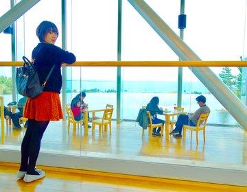 太平洋を見渡せるカフェ!茨城の国営ひたち海浜公園で半日おすすめコース♡