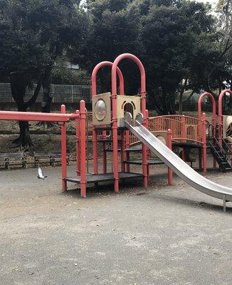 千葉公園 遊具広場