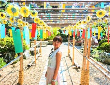 夏の京都旅!ハートの猪目窓で人気の正寿院で開催中!風鈴まつりで夏を感じよう!