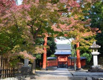 【秋の嵐山デート】紅葉狩りにピッタリの世界遺産・竹林の道・日本で唯一の髪の神社を巡るプラン♪