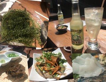 恵比寿駅前で沖縄旅行に来た気分。駅徒歩1分で沖縄料理を堪能してみませんか?おすすめ