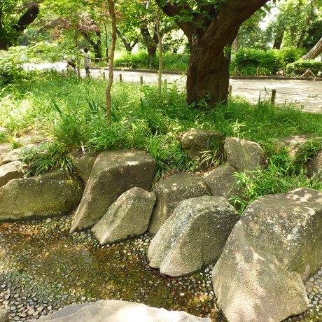 上野恩賜公園