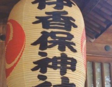 【日帰り温泉旅行】群馬・伊香保温泉まで電車でゆったり♪秋シーズンのカップル温泉旅行におすすめ!