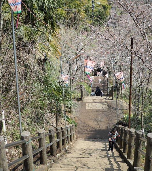 飯山白山森林公園