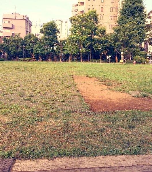 どんぐり公園