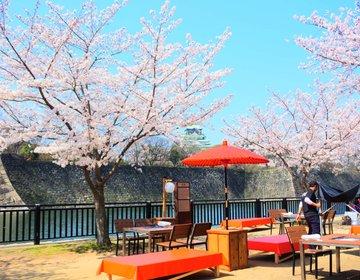 【2018年最新】天守閣と桜を眺めながらBBQができる!話題の「和ーべきゅう」を体験してみた!
