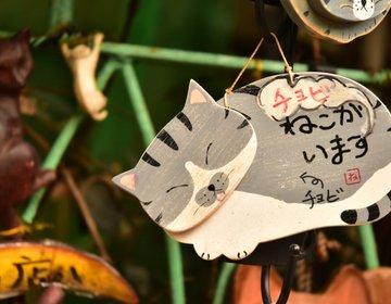 【谷中猫さんぽ】レトロな町並みを散策する癒しデートプラン♡