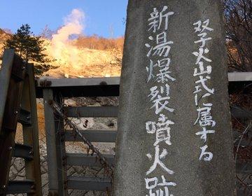 那須塩原の秘湯で源泉掛け流しのお湯につかり、吊橋を渡った後にスイーツを楽しむ