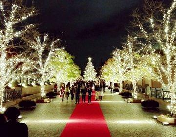 東京イルミネーションランキング1位!冬、クリスマスデートは恵比寿ガーデンプレイスで決まり!