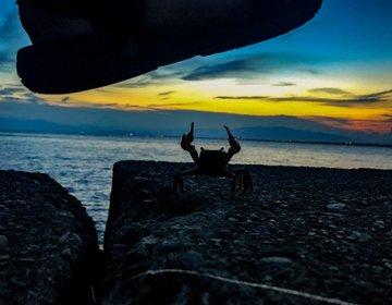 【江ノ島日帰りコース】江ノ島グルメ「生シラス丼」を食べて、ロマンチックな海岸に行こう!