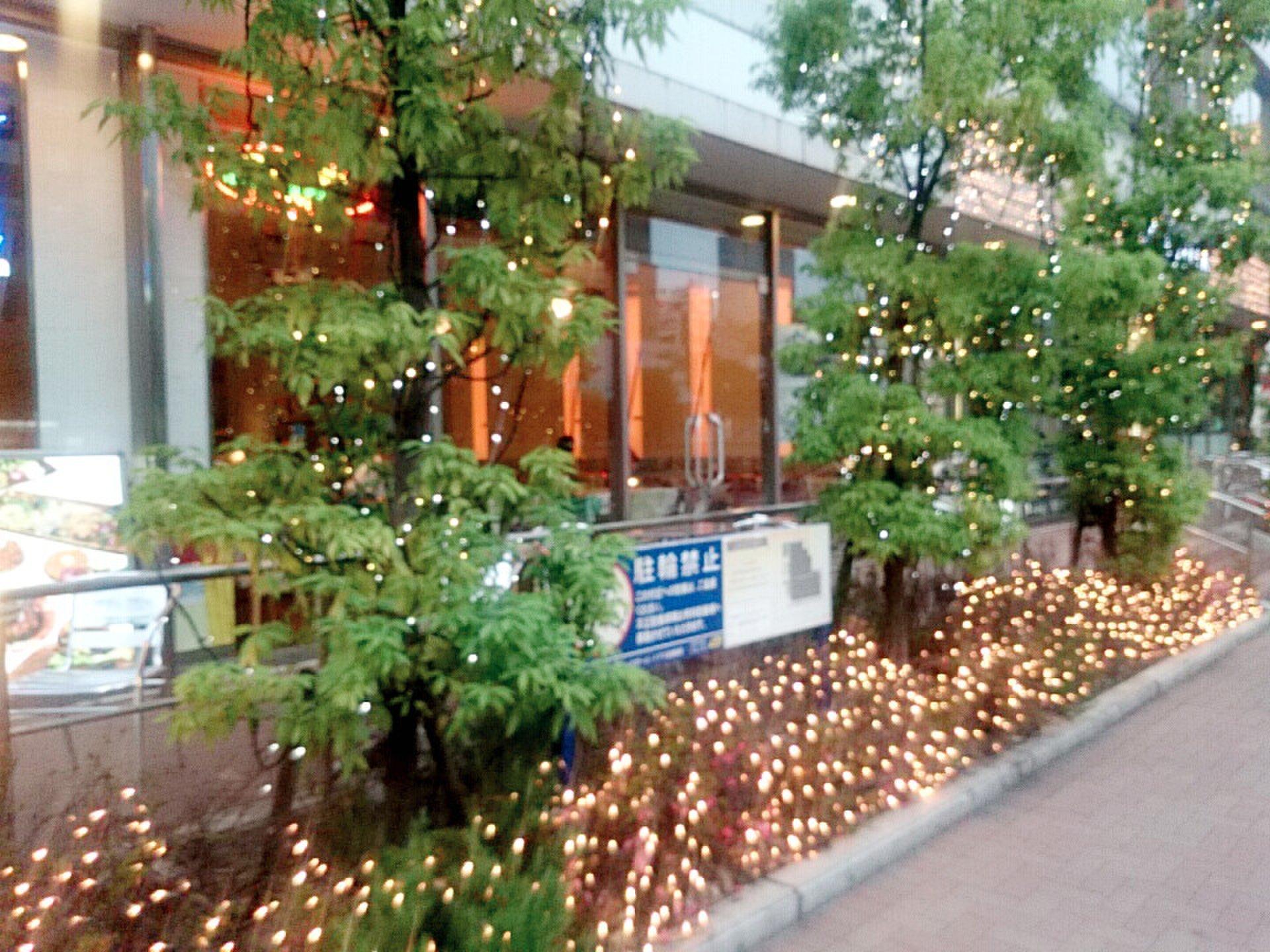 横浜駅周辺のテラスがあるお洒落カフェまとめ!休日ランチやディナーデートに。ペットok! ハマボール