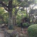 旧朝倉家住宅 (重要文化財)