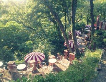 【美しすぎる天空のオープンテラス】鎌倉名所巡りからの非日常カフェ「樹ガーデン」で癒されよう