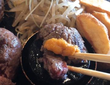 【唐津】美味しいお肉を食べるならココ〜デート・飲み会・ランチ・ディナー・子連れ〜