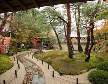 【庭園日本一・足立美術館】島根県の僻地にありながら、年間50万人が世界中から訪れる、謎にせまる。