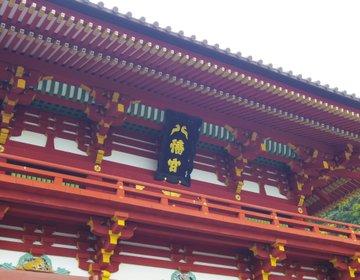 【鎌倉さんぽ】鎌倉の代名詞!と言えばココ「鶴岡八幡宮」仕事運も縁結びも叶えます♡