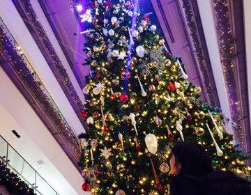 【2015年最新版】表参道ヒルズの巨大クリスマスツリー!
