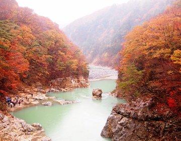 【紅葉2015】秋の栃木がすごい!紅葉&パワースポット&食を楽しむ栃木旅!