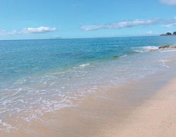 日本一ウミガメが上陸する場所に行ってみない?「永田前浜•いなか浜」