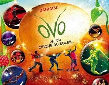 昆虫の世界をサーカスで表現。【シルク・ドゥ・ソレイユ  ダイハツ オーヴォ (ovo)】