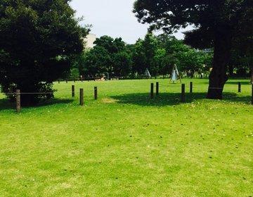 【ピクニックデート】都内の穴場スポット『中目黒公園』で過ごすコスパ最強のおすすめデートプラン!