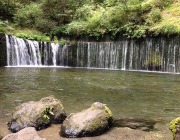 【軽井沢/長野】低予算◆定番3スポット&幻の魚⁈自然の恵みを楽しむ&お買い物満喫プラン