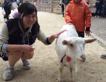 動物好きの人にはたまらない!見るだけでも癒される♪【東山動植物園】