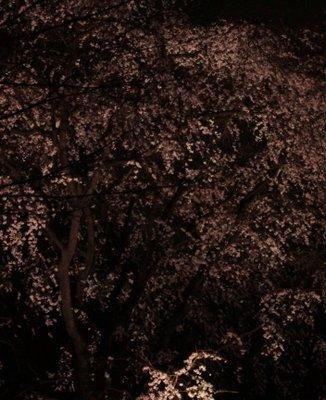 六義園 吟花亭跡