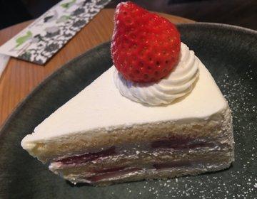 【恵比寿カフェ】ATRE3階カフェのサントロペに行ってみた★
