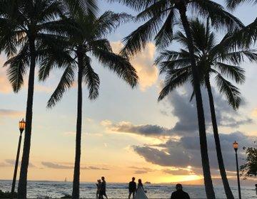 ハワイのおすすめお散歩コース。ビーチ&サンセット&ピクニックを満喫!