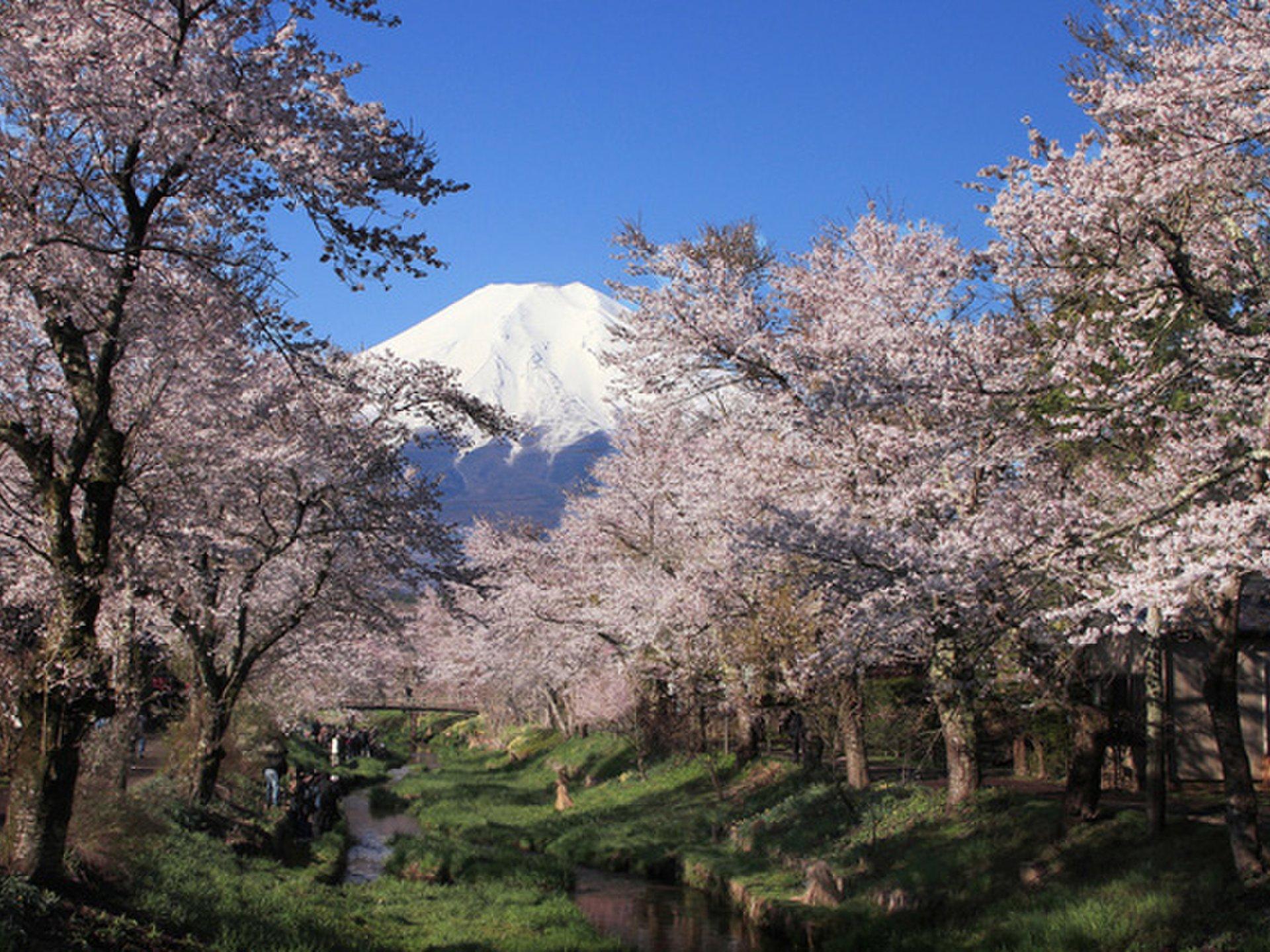 日本名所!穴場なのに絶景が見られる、おすすめスポット7選