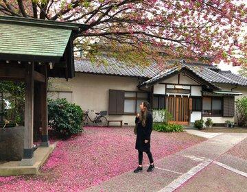 都内おすすめお花見スポット周辺巡り♡おすすめ蔵前カフェ