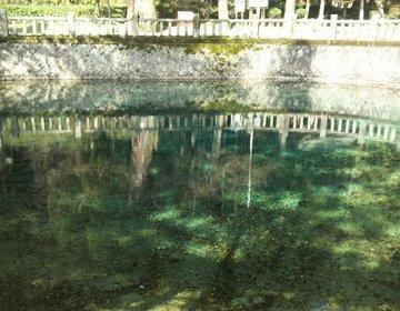 山口にもあった「青い池」別府弁天池で清き流れに癒されませんか♪