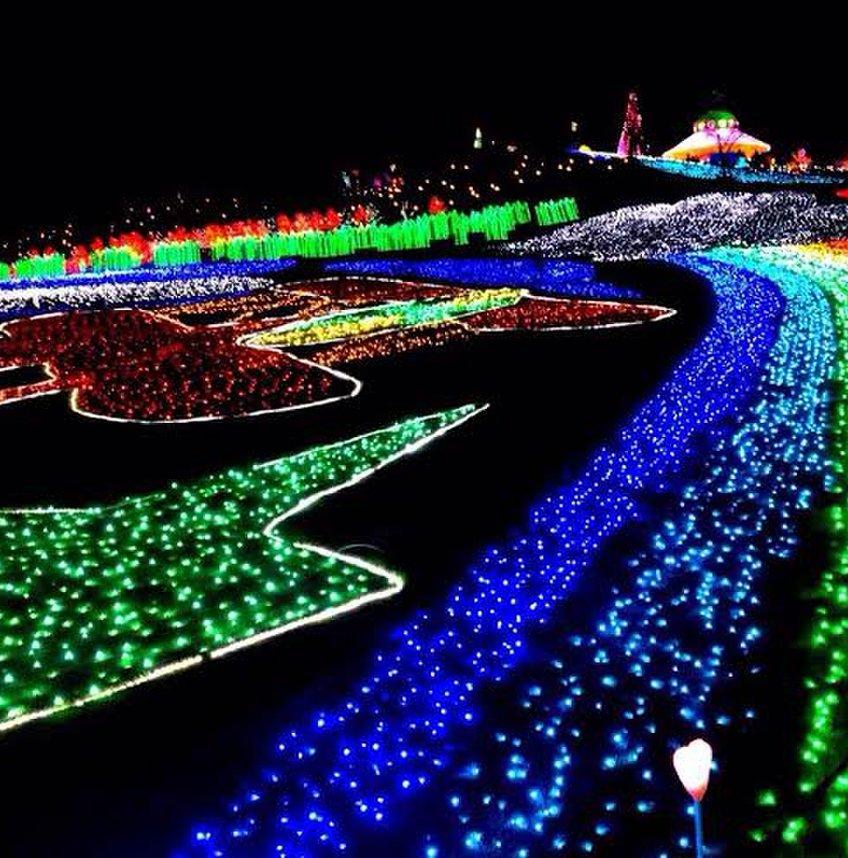 東京ドイツ村 フラワーガーデン