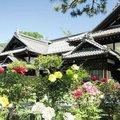 にしん御殿 小樽 貴賓館(旧青山別邸)
