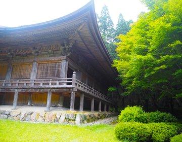 奈良まで地下流水で繋がっている【福井県・若狭神宮寺】お水送りのお水を取るお寺。超神聖スポット。