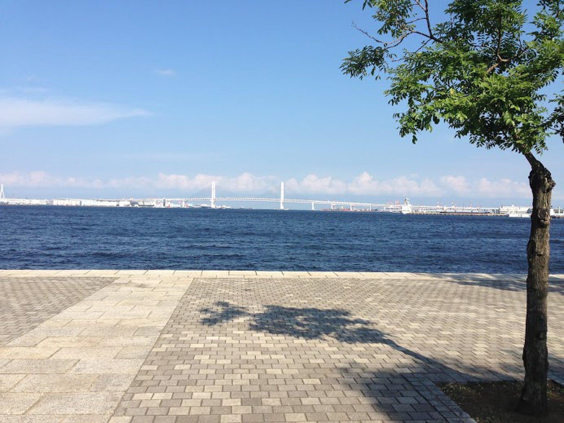 横浜みなとみらい海沿い散歩デートコース!観光スポットをのんびり散策!