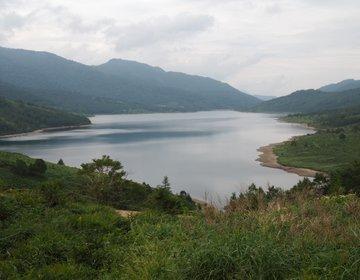 天空の湖「野反湖」では、たくさんの山野草に出会えます♪ハイキングにも最高!です。