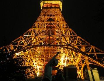 夜遊び失敗!?東京タワーとスカイツリーへドライブ!どっちが高いのか見比べてみた。