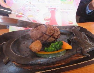 これは本当にハンバーグ?静岡県民に愛されるハンバーグ屋さん「さわやか」とは?