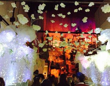 【クリスマスは水族館で幻想的な世界を♪】アクアパーク品川のスノウアクアリウムが今年は見逃せない!