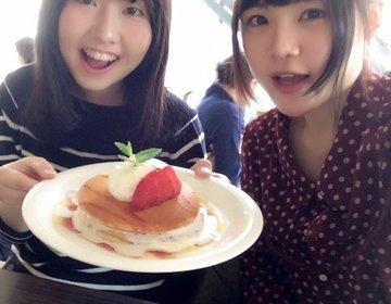 癒しの女子会Day!代官山で「人気パンケーキ×うさぎ」のダブル癒し効果◎