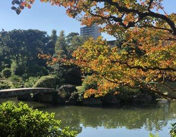 相撲だらけの両国♡都内おすすめ入場無料博物館と日本庭園おさんぽ