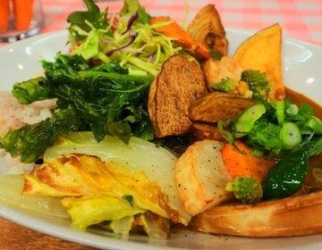 【脱・野菜不足】知る人ぞ知る!なんば裏路地でいただく満腹薬膳野菜カレー!