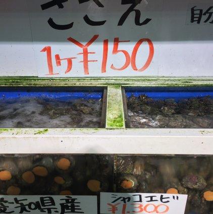 豊浜 魚ひろば