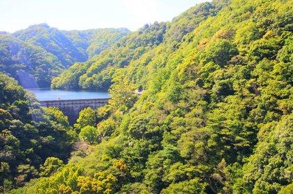 ハーブ園山頂駅(神戸布引ロープウェイ)