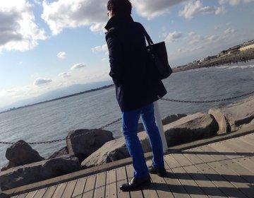 【江ノ島大人デート】イルカ鑑賞からシラス丼!海の魅力盛りだくさん